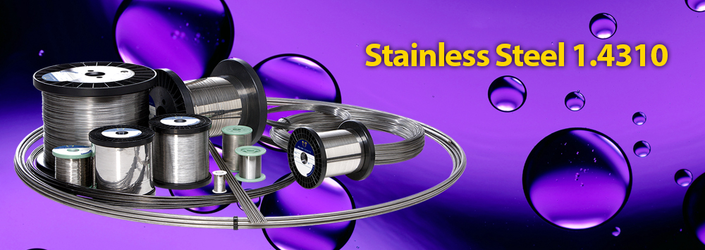 Stainless Steel 1.4310